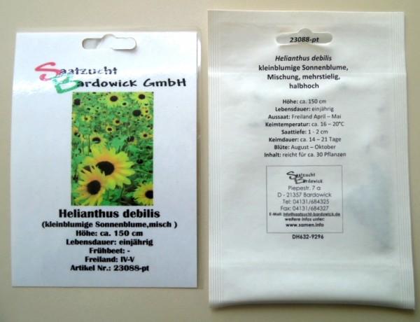 Sonnenblume kleinblumige Mischung