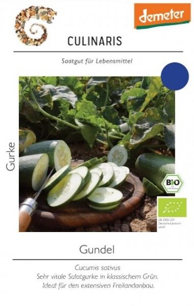 Salatgurke Gundel Inhalt 12 Korn -Die Blattgesundheit ist sehr gut und selbst bei extremer Trockenh
