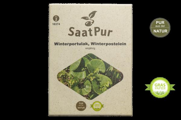Winterportulak (Winterpostelein) - für ca. 1500 Pflanzen