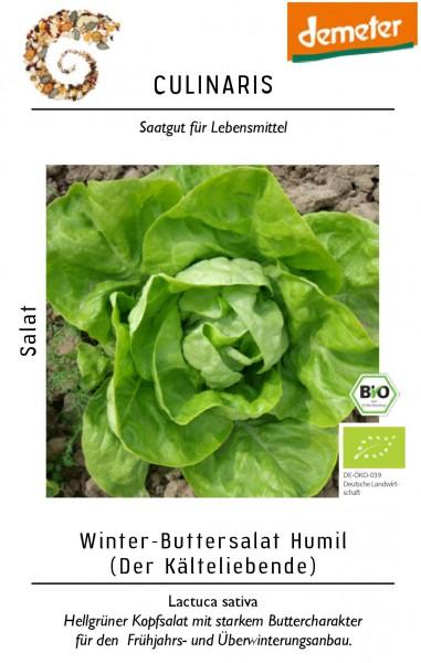 Kopfsalat Wintersalat Humil für ca. 100 Pfl. Bio-Gemüsesamen - Bio Kopfsalat
