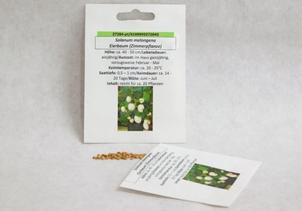 Eierbaum (Zimmerpflanze)