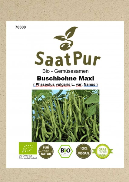 Bio Gemüsesamen Buschbohne Maxi