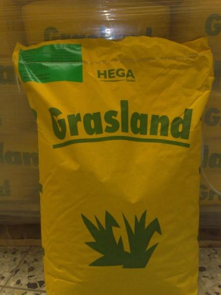 Grasland Weide Nr. V Reparatur Nachsaat