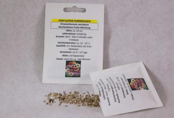 Wucherblume (Sommermargerite) Frohe Mischung