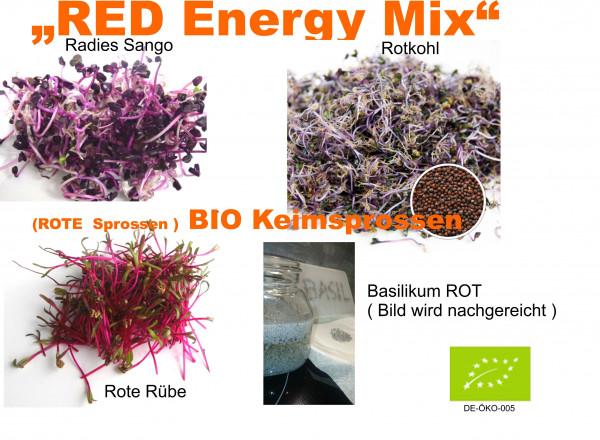 BIO Keimsprossen RED Energy MIX Mischung Keimsaat