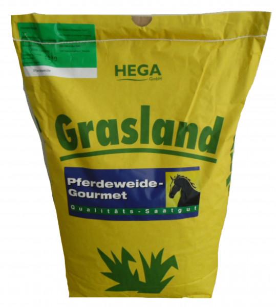 Grasland Pferdeweide ohne Kräuter