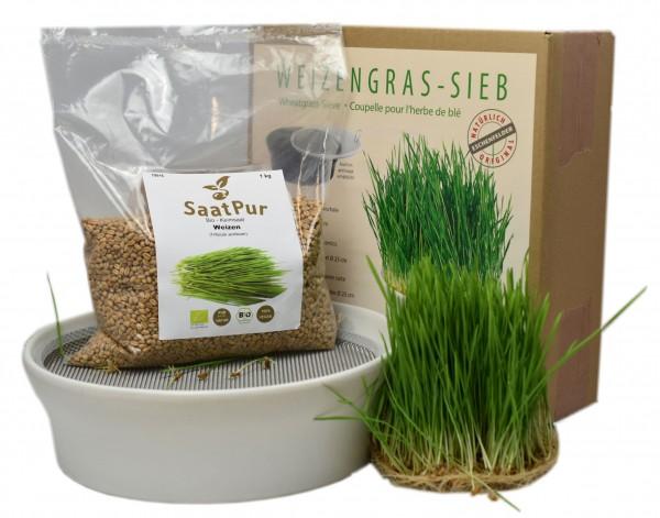 Weizengrassieb 23 cm, weiß und 1 kg BIO Weizengrassaat