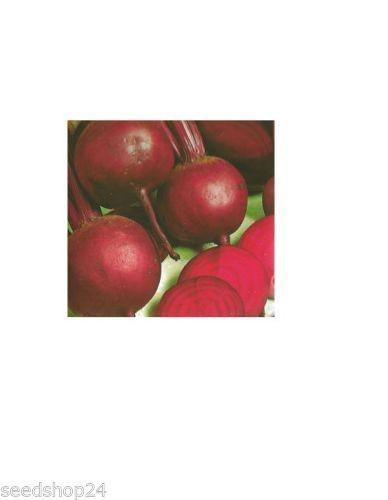 Rote Rüben Rote Kugel 2