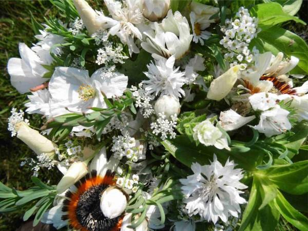 Sommerblumenmischung Traumgarten in Weiß