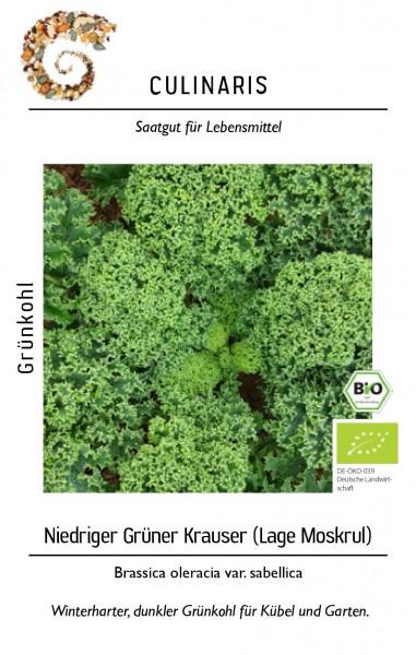 Grünkohl niedriger Grüner Krauser Winterhart für ca. 50 Pfl - Bio-Gemüsesamen - Bio Grühnkohl