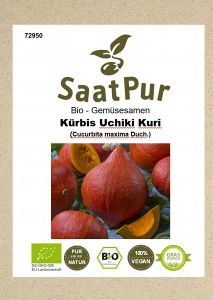 Bio Gemüsesamen Kürbis Uchiki Kuri beliebter Speisekürbis Hokkaido-Kürbis für ca. 10 Pfl.